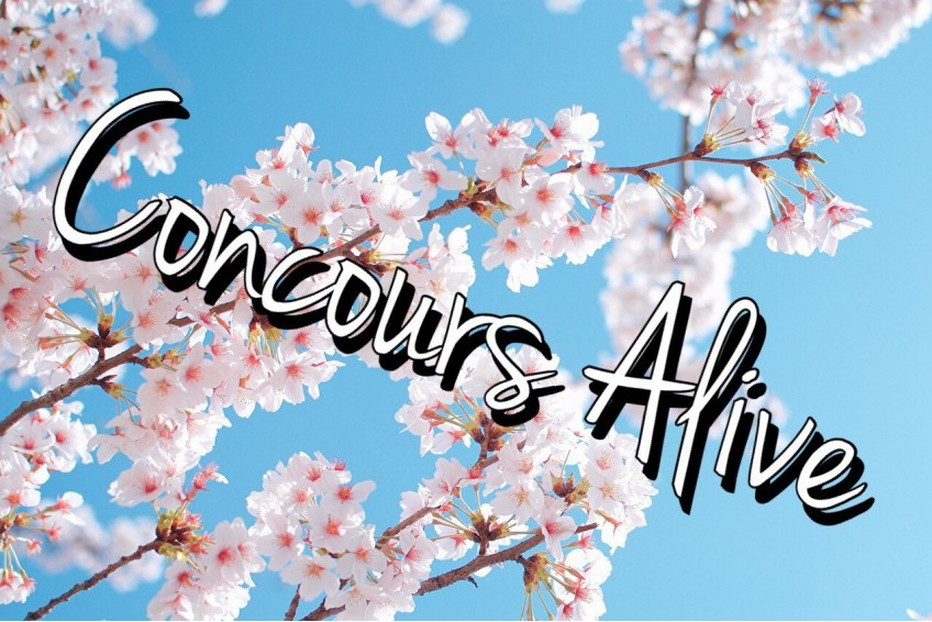 CONCOURS ALIVE !
